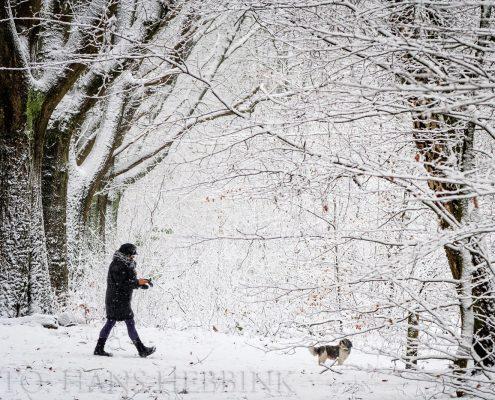 nijmegen-bos-sneeuw